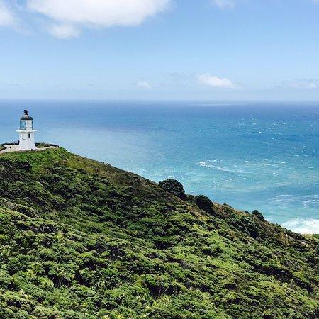 North Island, Yeni Zelanda: photo1.jpg
