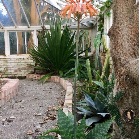 Φάλμουθ, UK: Fantastic historical gardens