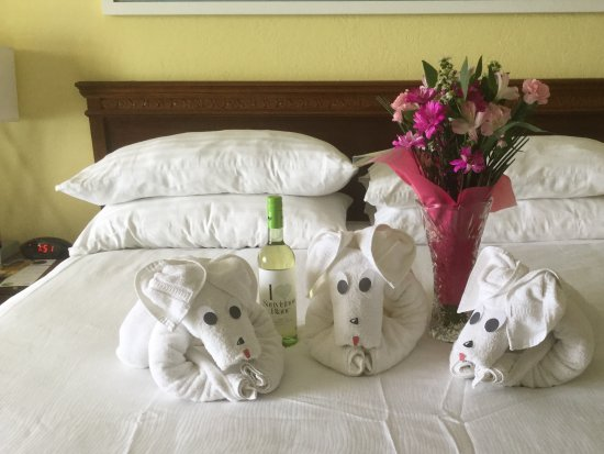 Holiday Inn Resort Aruba - Beach Resort & Casino: Here is what we arrived to in our room!