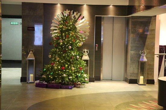 Tree Near Elevator Picture Of Doubletree By Hilton Hotel London