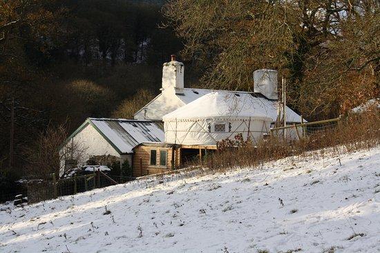 Abergele, UK: Hapus yurt