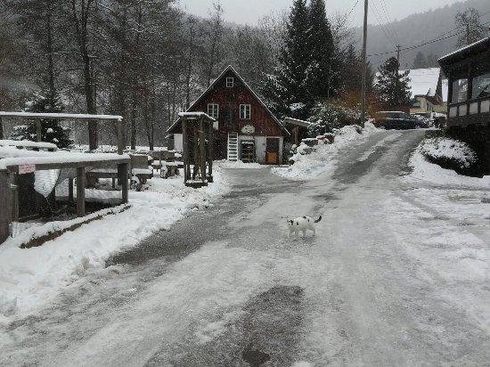 Alpirsbach, Deutschland: 20171210_095717_large.jpg