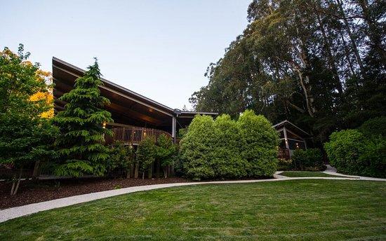 Olinda, Australia: garden
