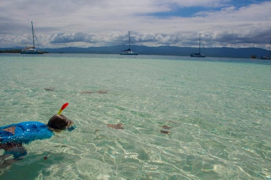 Las Cumbres, Παναμάς: Snorkeling en la Piscina Natural (Natural Pool)