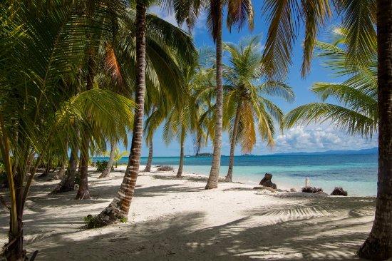 Las Cumbres, Παναμάς: Cayos Holandeses (Dutch Keys)