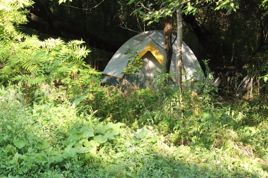 St. Catharines, Canada: Someone was sleeping in the tent
