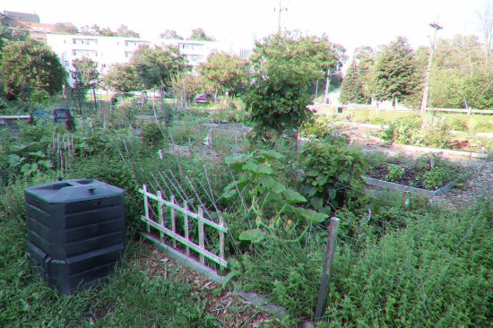 St. Catharines, Canada: The garden