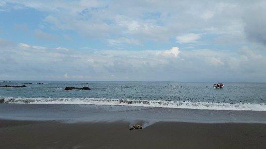 Drake Bay, Costa Rica: 20171210_084311_large.jpg