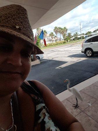 Belleair Beach, FL: 20170825_172453_large.jpg