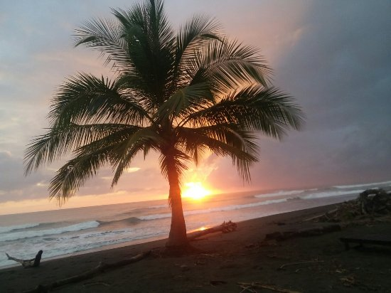 Playa Matapalo, Costa Rica: Charlie's Jungle House