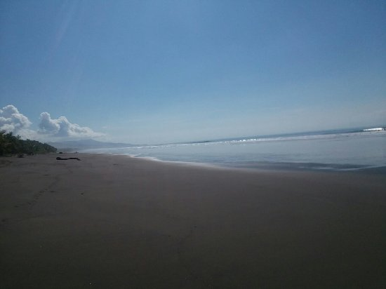 Playa Matapalo, Costa Rica: 20171206_091009_large.jpg