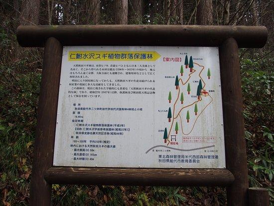 Noshiro, Japan: 案内看板