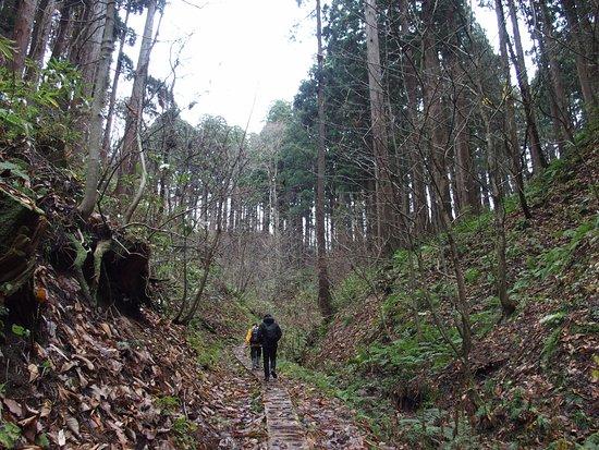 Noshiro, Japan: 遊歩道があって歩きやすいです