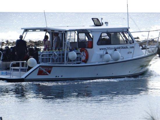 Great dive boat  - Picture of Brac Scuba Shack, Cayman Brac