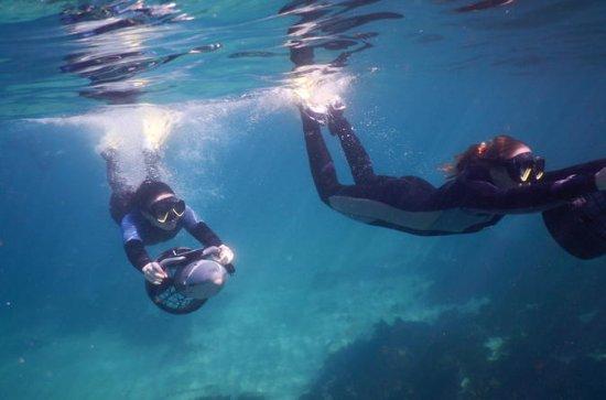 Excursões subaquáticas do...