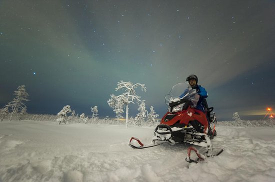 Northern Lights Snowmobile Tour with ...