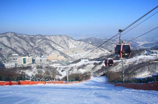 Paquete Vivaldi Park Ski Shuttle Bus