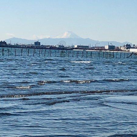 Funabashi Sanbanze Ocean Park: ふなばし三番瀬海浜公園