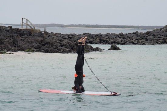 Puerto Baquerizo Moreno, Ecuador: Yoga SUP practice. Isla Lobos