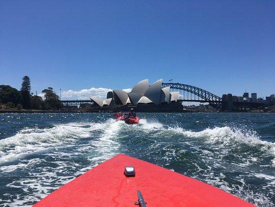 Rose Bay, Austrália: The icons!