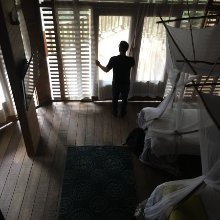 On Vacation Amazon: photo4.jpg