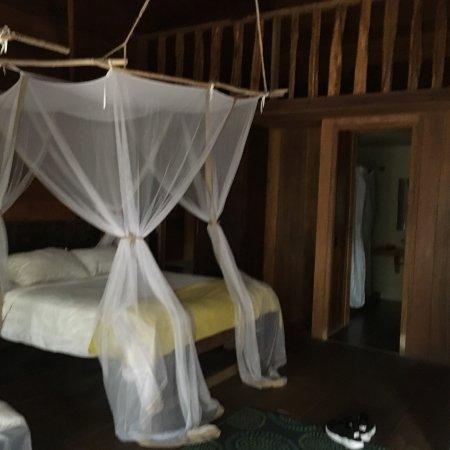 On Vacation Amazon: photo5.jpg