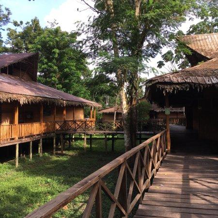 On Vacation Amazon: photo7.jpg