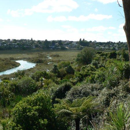 Northcote, New Zealand: photo4.jpg