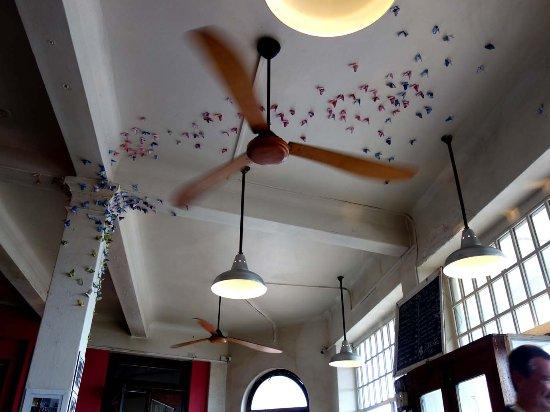 Kalk Bay, Südafrika: butterflies on the ceiling