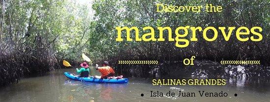 Leon, Nicaragua: come and discover the mangroves of Salinas Grandes, Isla de Juan Venado