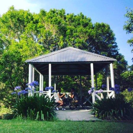 Avoca Beach, Australia: A glass of bubbly in the tea house