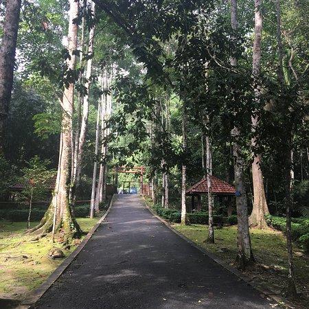 Σέλανγκορ, Μαλαισία: photo3.jpg