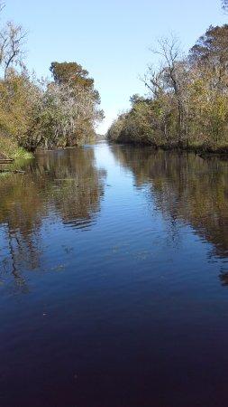LaPlace, Luizjana: Beautiful swampland