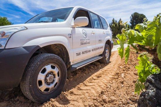 Montsant Natura: Ruta 4x4 entre viñedos