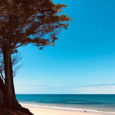Torquay, Australia: photo1.jpg