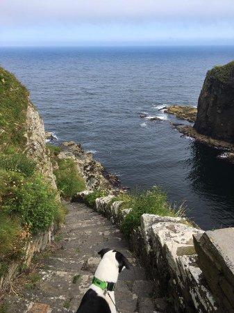 Whaligoe, UK: Steps