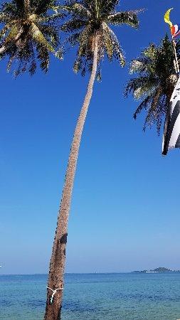 Samui Evasion : 20171212_151009_large.jpg
