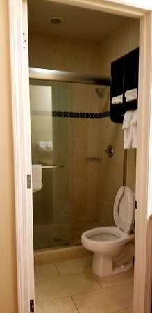 Staybridge Suites New Orleans: Bathroom With Stand Up Shower