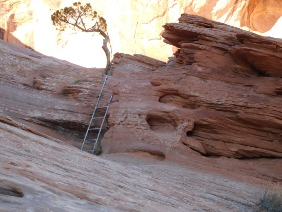 Corona Arch: ladder to climb from one section to another