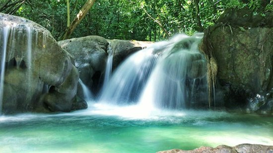 Mayfield Falls Negril Jamaica Picture of Blue Mahoe Tours