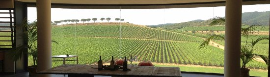 "Gallia Palace Beach & Golf Resort: ""Antinori-Le Mortelle"" Cellar nearby"