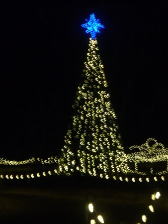 Aiken, Carolina del Sur: Christmas tree