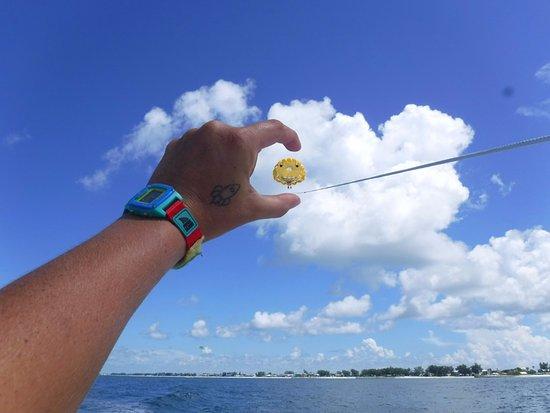 Bradenton Beach, FL: High in the sky