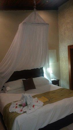 Falls Resort at Manuel Antonio: View from door