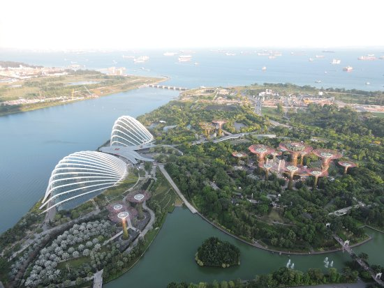 gardens by the bay from the skydeck of marina bay sands - Garden By The Bay Breakfast