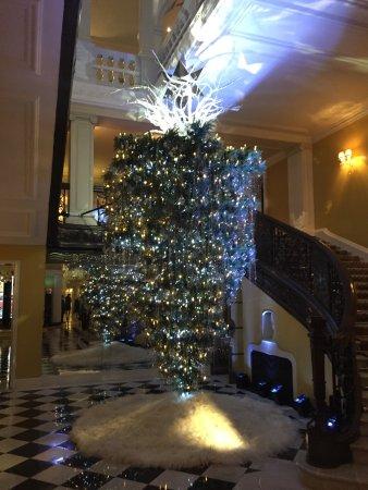 Albero Di Natale Capovolto.L Albero Di Natale Capovolto Nella Lobby Picture Of Claridge S London Tripadvisor