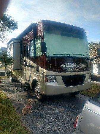 Seffner, FL: IMG_20171204_094619393_HDR_large.jpg