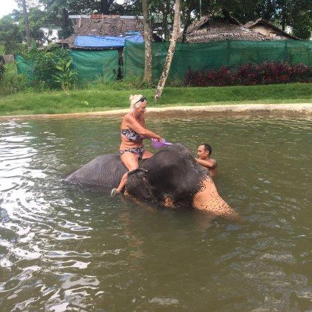 Phang Nga, Tailândia: photo2.jpg