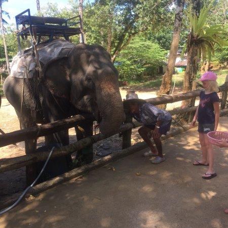 Phang Nga, Tailândia: photo4.jpg