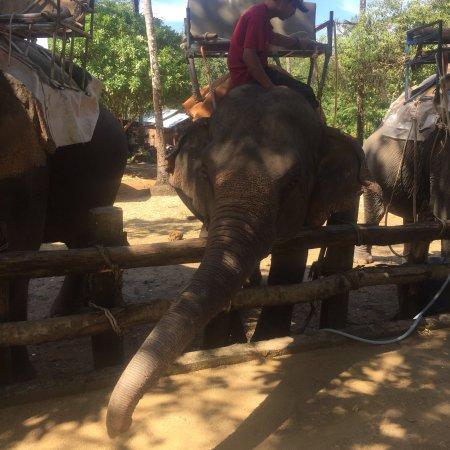 Phang Nga, Tailândia: photo7.jpg